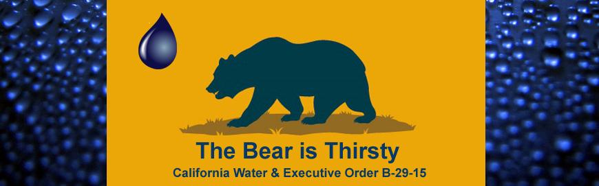 thirsty-bear