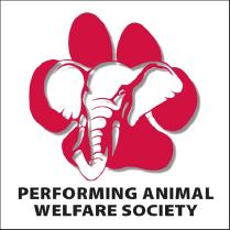 animal-society