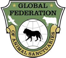 global-federation