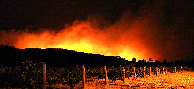 Fire-at-the-Winery-01